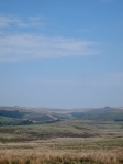 Tors seen through the hazy heat