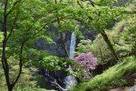 Nikko - Kegon Falls